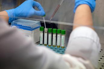 Coronavirus, 30% ha sviluppato anticorpi: l'indagine