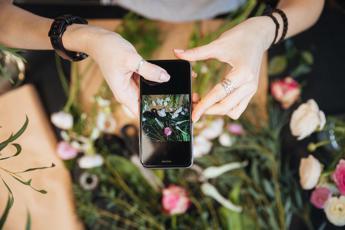 Crowdfunding, Bloovery trasloca online mercato fiori: overfunding del 153%