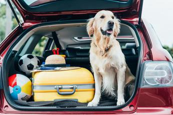 Vacanze pet friendly per un italiano su 3
