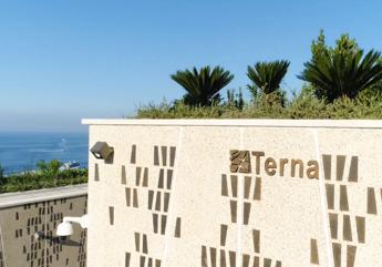 Terna, Donnarumma: Investimenti fino a 15 mld per accompagnare transizione energetica