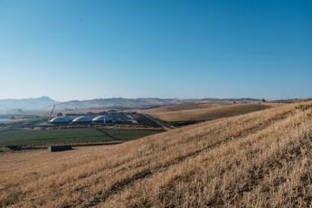 """Consorzio Biogas: """"Agricoltura pronta a contribuire a transizione green trasporti"""""""